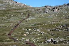 C walkers on Kosciuszko track